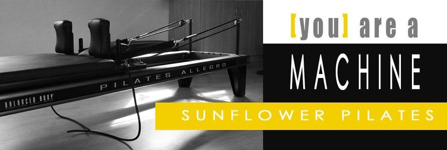 Sunflower Pilates Studio - South Peninsula, Cape Town