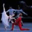 THE PERFECT CHRISTMAS BALLET