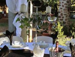 Weddings in the Magaliesberg