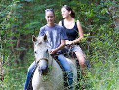 Hollybrooke Farms Horse Trail