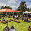 Elgin Cool Wine & Country Food Festival 2017