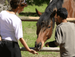 Equine therapy for severely disabled children in the Western Cape