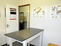 Veterinary Surgery in the Crags near Plettenberg Bay