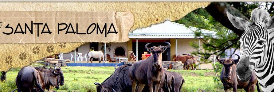 Santa Paloma Guest Farm and Eco Centre