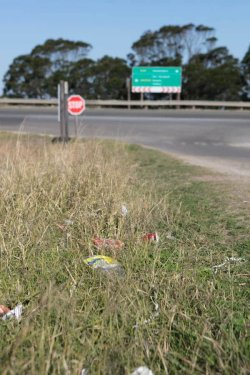 The impact of litter on communities