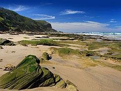 Explore the Garden Route coast with Travsa