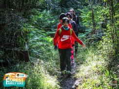 FNB Forest Family Hike