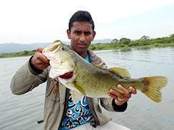 bass rods and reels Nelspruit