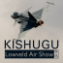 Photos of the Kishugu Lowveld Airshow | 2018