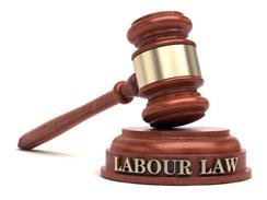 Labour Law in South Africa